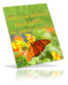 Thumbnail How To Attract Butterflies to Your Garden - plr